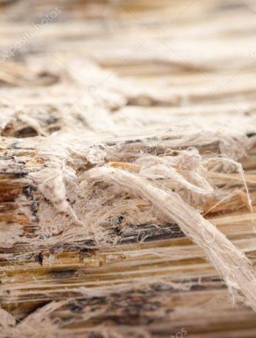 depositphotos_83640868-stock-photo-asbestos-serpentine-fibers
